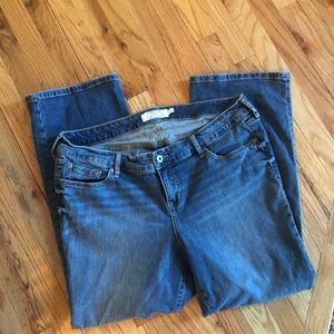 Torrid denim bootcut plus size 18 short jeans